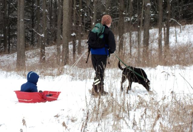 mom pulling sled