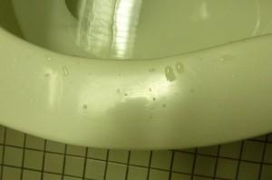 wet toilet seat